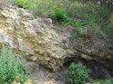 Malá skalní stěna na Číčovickém Kamýku.