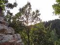 Severozápadní výhled z Dívčího kamene.
