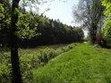 Zelenající se pravý břeh rybníka Horní Svrčov.