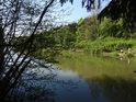 Rybářsky vděčný rybník Horní Svrčov.