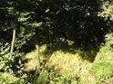 Sluneční ostrůvek uprostřed Dolních Vinohrádek.
