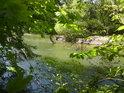 Řeka Morava tvoří přirozenou západní hranici přírodní rezervace Doubrava.