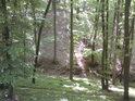Malý potůček v hlubokém lesním zářezu a výše položená pěšina.