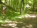 Aby bylo jasno, že Doubrava je chráněným územím...
