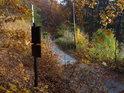 Lesní cesta v dolní části Dřínové za úřední a informační cedulí, obohacenou o kalhotky.