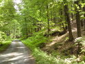 Spodní část přírodní rezervace Františkov leží při lesní silnici z obce Františkov na Josefovou.