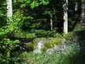 Malá opěrná lesní zídka.