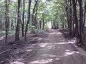 Cesta k východnímu okraji chráněného území.