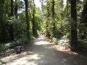 Cesty jsou tu poměrně udržované a také využívané k procházkám a ke sportu.