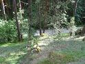 Loupežnický pohled dolů ze svahu na cestu mezi Holubovem a Dívčím kamenem.