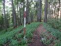 Triangulační bod na vrcholu Holého kopce.