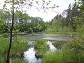 Rybník Malá Houkvice.