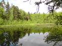 Rybník Malá Houkvice z hráze.