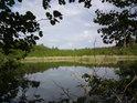 Pohled na hladinu rybníka Velká Houkvice z hráze, na druhé straně je rákosí, které přechází v malé bažiny.