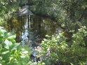 Voda z rybníka Velká Houkvice odtéká do náhonu Alba.