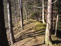 Na hradním kopci je to taková kratičká hřebenovka.