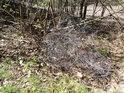 Komu se asi nehodilo klubko drátů? Co to dokáže udělat v lese? Dokážeme se zeptat lesní zvěře či ptáků?