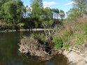 Přirozený břeh řeky Odry se postupem času mění.