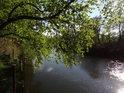 Sluncem prozářená hladina řeky Odry.