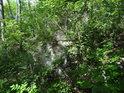 Hřebenatkový útes za listím stromů.