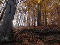 Polední sluníčko téměř za poledne se v listopadu jeví nízko.