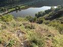 Řeka Labe pod Kalvárií, vidíme také železniční trať na trase Litoměřice – Ústí nad Labem.