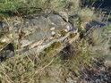 Mechem a lišejníkem porostlý kámen na vrcholu Kalvárie je přes všechny pochybnosti přirozeně ulomený.
