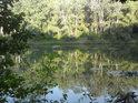 Vycházející Slunce se opírá do listí topolů na opačném břehu slepého ramene.