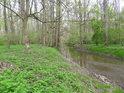 Pravobřežní živé rameno řeky Moravy.