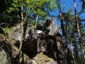 Vegetace se chytá skal u Klokočských průchodů.