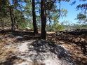 Tu Plochý kámen, tu pěšina, tu borovice či jiný strom, tak vypadá severovýchodní vyhlídková hrana na Klokočských skalách.
