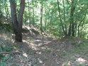 Lesní cesta, která již téměř není používaná.