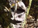 Světlý kámen s vícebarevným listím.