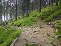 Prakovité horské rozcestí a turisté, chránící se před deštěm.