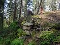 Miniaturní ostroh nad šumavským potůčkem.