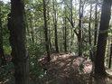 Lesní hřeben pokračuje na jihovýchod.