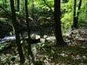 Osu nádherného údolí tvoří řeka Chrudimka.