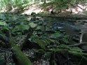 Chrudimka je prostě okouzlující řeka.