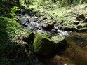 Debrný potok přitéká od jihu, zhruba od Nasavrk.