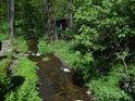 Debrný potok těsně nad vtokem do Chrudimky.