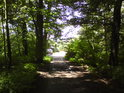 Pohled z nitra lesa do Letohradu.