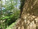 Kolmá skalní stěna, která vznikla těžbou spraší pro cihelnu Osvětimany.