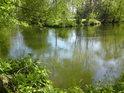 Jsou období, kdy Malá voda má vyšší průtok, než řeka Morava.