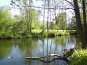 Přírodní památka mezi městy Litovel a Mohelnice