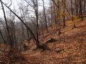 Malé suché údolí ve svahu jako součásti hlubšího údolí Svitavy.