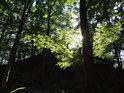 Slunce mezi bukovým listím na vrcholu Malého Blaníku.