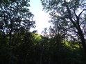 Z Maršavy je vidět na nedaleký Holý kopec.