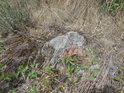 Některé kameny vyvstávají ze země.