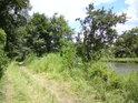 Cesta mezi slepým ramenem a pravým břehem řeky Labe.