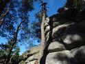 Souška borovice stále ční k nebi úplně vedle skály Milovských Perníčků.
